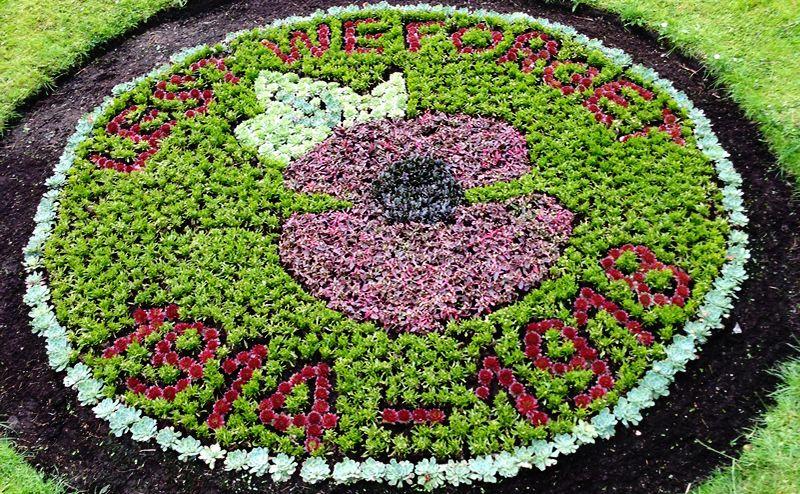 World War 1 flower bed image